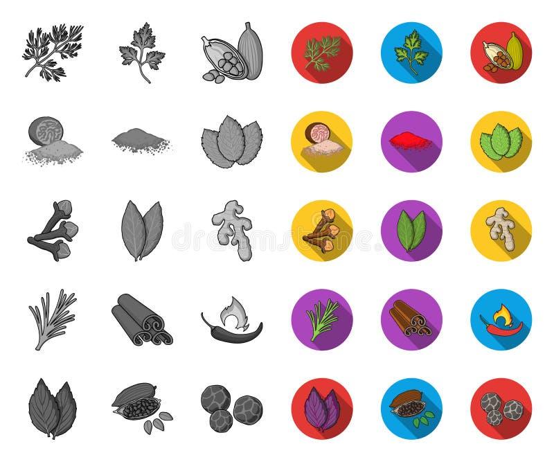 Kraut und Gewürze mono, flache Ikonen in gesetzter Sammlung für Entwurf Verschiedene Arten von Gew?rzen vector Netz des Symbols a stock abbildung