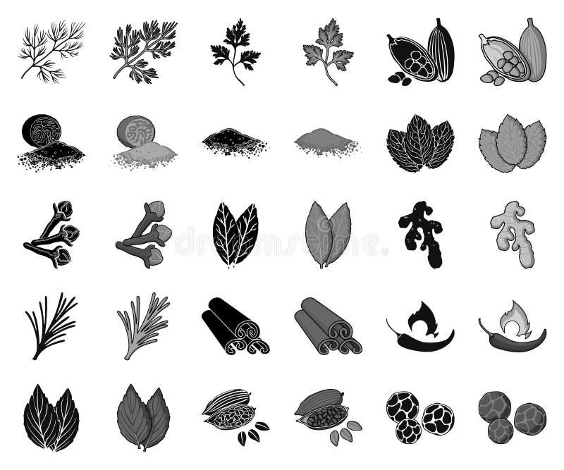 Kraut und Gewürze schwarz, einfarbige Ikonen in gesetzter Sammlung für Entwurf Verschiedene Arten des Gewürzvektor-Symbolvorrates lizenzfreie abbildung