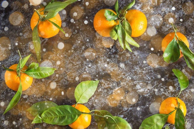 Krawędź pomarańczowych tangeryn z zielonymi liśćmi na ciemnym tle Górny widok i miejsce na kopiowanie zdjęcia royalty free