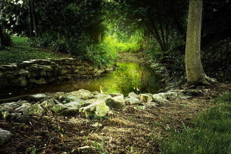 Krawędź strumień z Rozjarzonym Zielonym Żółtym słońca jaśnieniem obraz royalty free