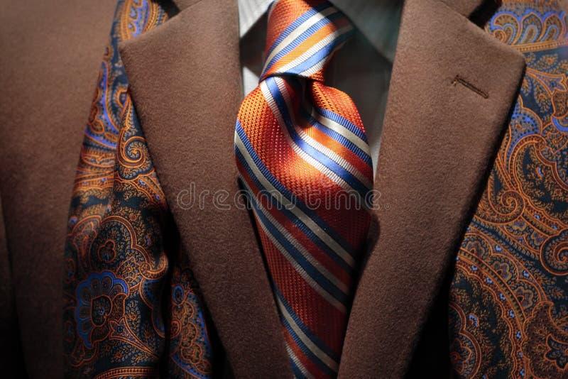 krawat kaszmirowy żakiet deseniujący szalika jedwabniczy krawat obrazy royalty free
