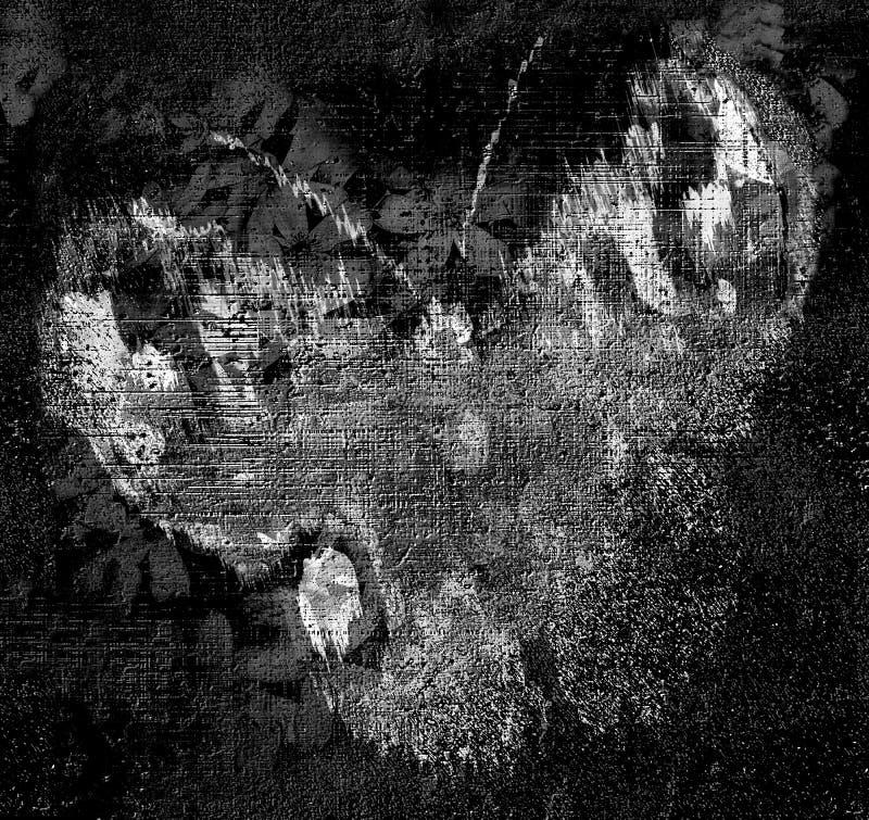 Kreślący motyla na grunge paskującym i pobrudzonym tle w czarny i biały ilustracja wektor