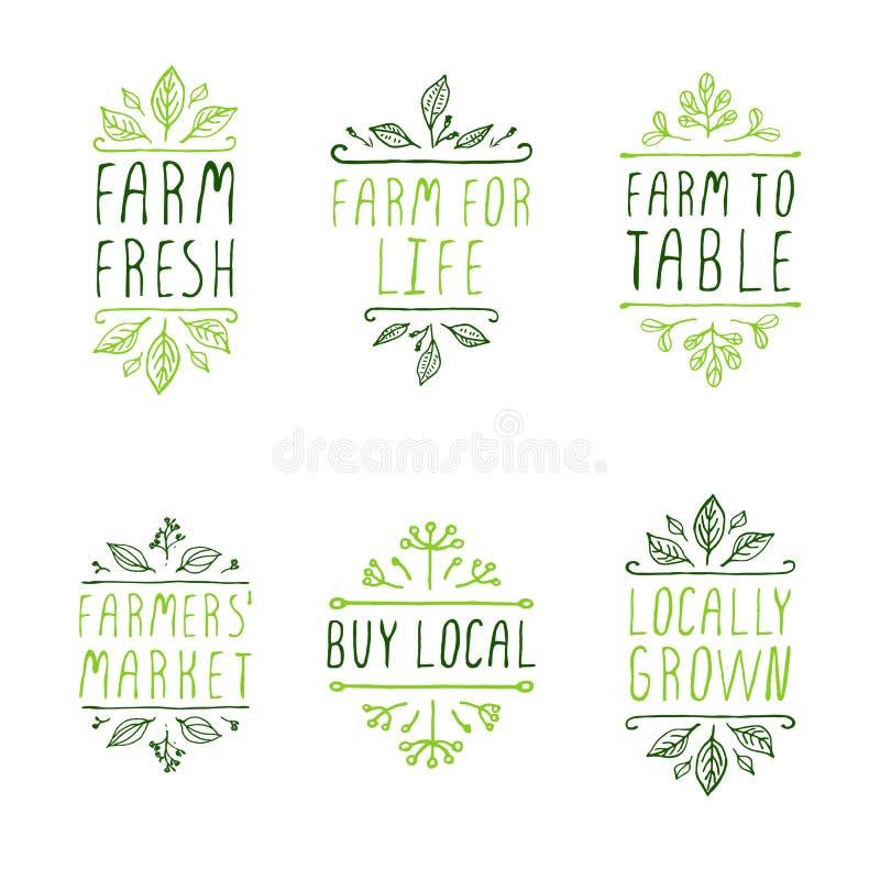 Kreślący typograficzni elementy Produkt rolniczy etykietki royalty ilustracja