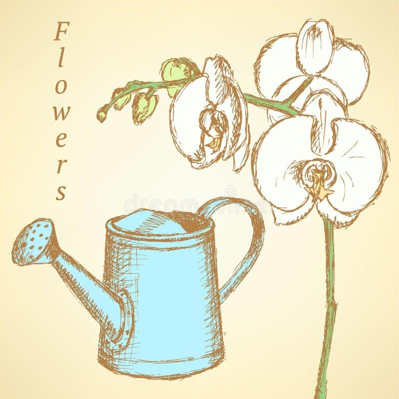 Kreśli orchidei i podlewanie puszki, wektorowy tło royalty ilustracja