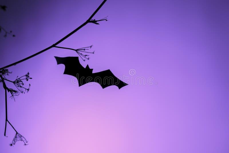 Kreativa trendyhalloween-bakgrund med svart pappersfladder som flyger över lila ljusbakgrund Kopiera utrymme kortdekoration arkivfoto