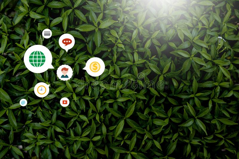 Kreative Art gemacht von den Blumen und von den Blättern mit den Anmerkungen, die flach liegen lizenzfreie stockfotografie
