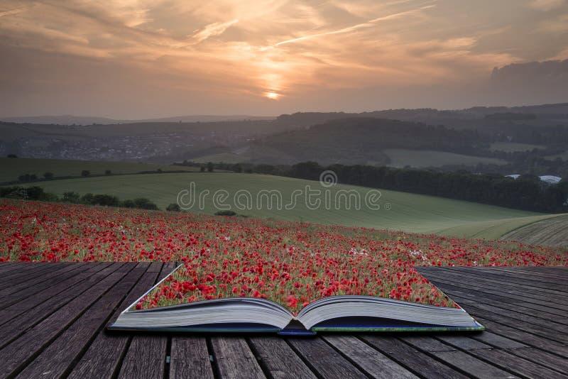 Kreative Konzeptseiten Mohnblumen-Weidelandschafts-UNO des Buches erstaunlicher stockfoto