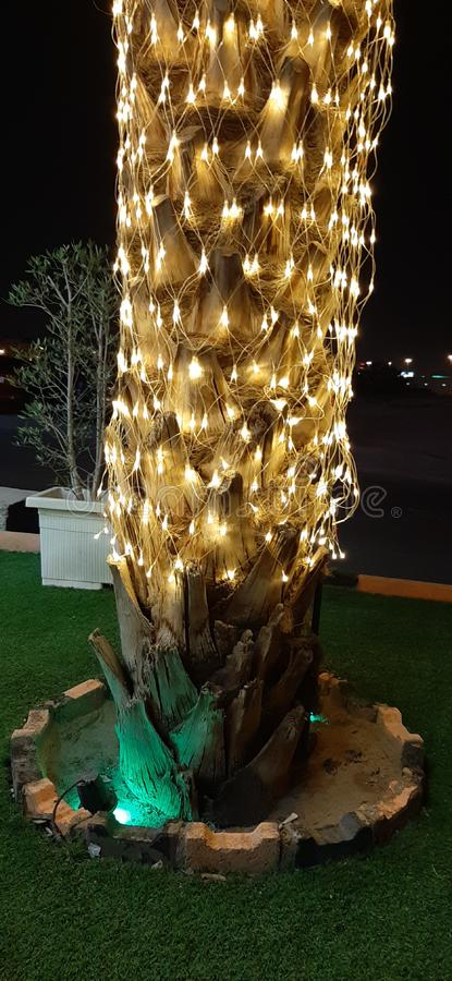 Kreative Palme mit Licht im Weihnachten lizenzfreie stockbilder
