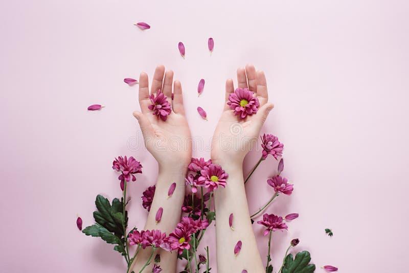 Kreativer Aufbau Schöne weibliche Hand mit purpure Blumen auf rosa Hintergrund Kosmetik f?r Handantifalte stockfotos