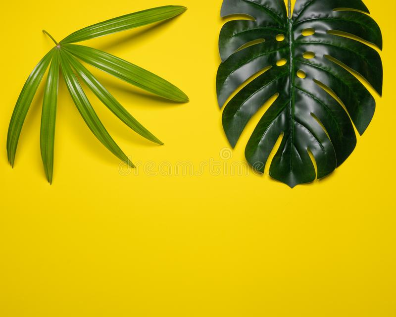 Kreativer Plan gemacht von den bunten tropischen Blättern auf gelbem Hintergrund Exotisches Konzept des minimalen Sommers mit Kop lizenzfreie stockfotos