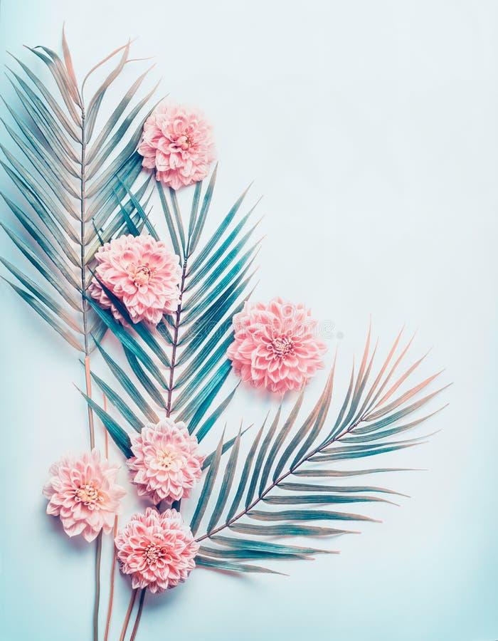 Kreativer Plan mit tropischen Palmblättern und Pastellrosa blüht auf Türkisblau-Tischplattenhintergrund, Draufsicht, Platz für Te lizenzfreies stockbild