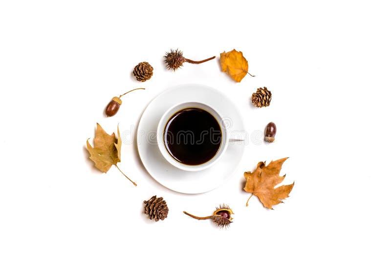 Kreatywnie deseniowy przygotowania Jesień skład robić wysuszeni liście, dogrose jagody i kwiat, na białym tle zdjęcie stock