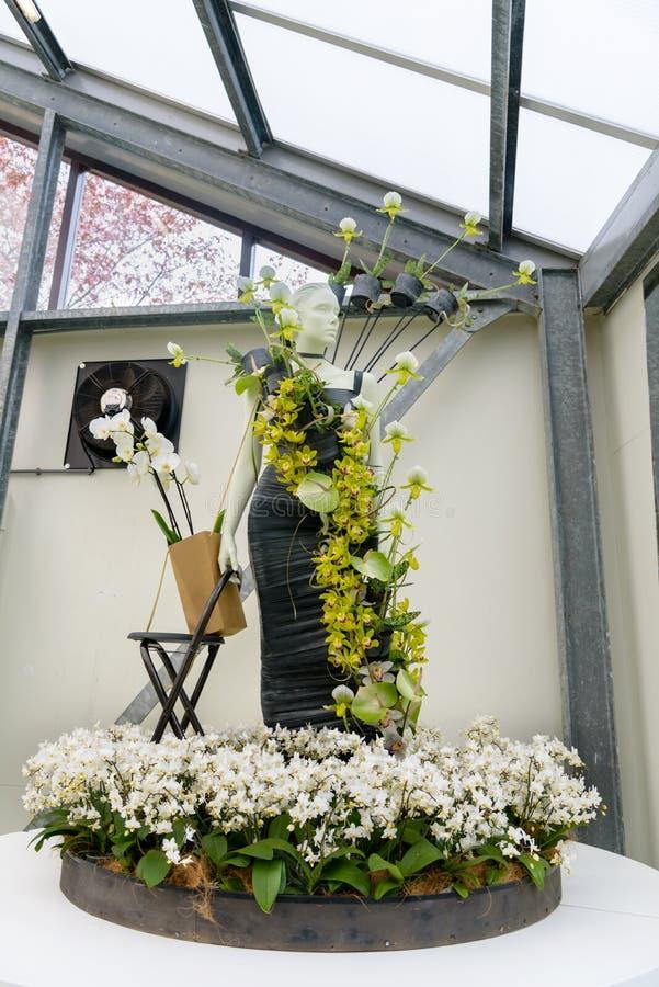 Kreatywnie elegancka luksusowa suknia z żywymi zielonymi orchideami na mannequin Wakacje zadziwiać kolory i wyśmienicie smaki zdjęcie royalty free