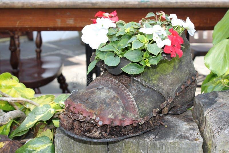 kreatywnie ogrodnictwo obrazy stock