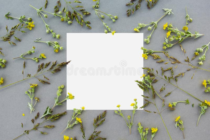 Kreatywnie układ robić dzicy kwiaty i liście z papierowej karty notatką Mieszkanie nieatutowy pojęcia odosobniony natury biel fotografia stock