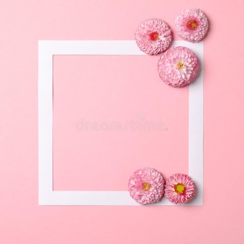 Kreatywnie uk?ad robi? kolorowi wiosna kwiaty i papier rama graniczymy Minimalny Wakacyjny poj?cie Mieszkanie nieatutowy wz?r obrazy royalty free