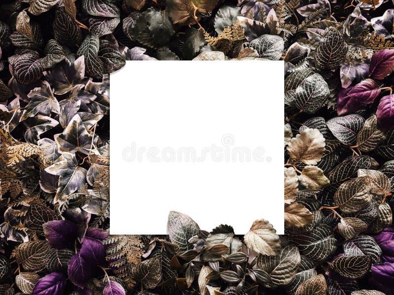 Kreatywnie układ robić kwiaty i liście z kopii przestrzenią od papierowej karty notatki Mieszkanie nieatutowy pojęcia odosobniony zdjęcie stock