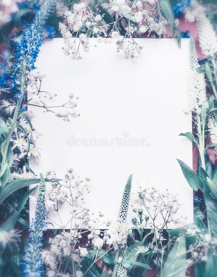 Kreatywnie układ robić z kwiatami i liśćmi wokoło papierowej karty notatki, błękitny pastelowy kolor fotografia royalty free