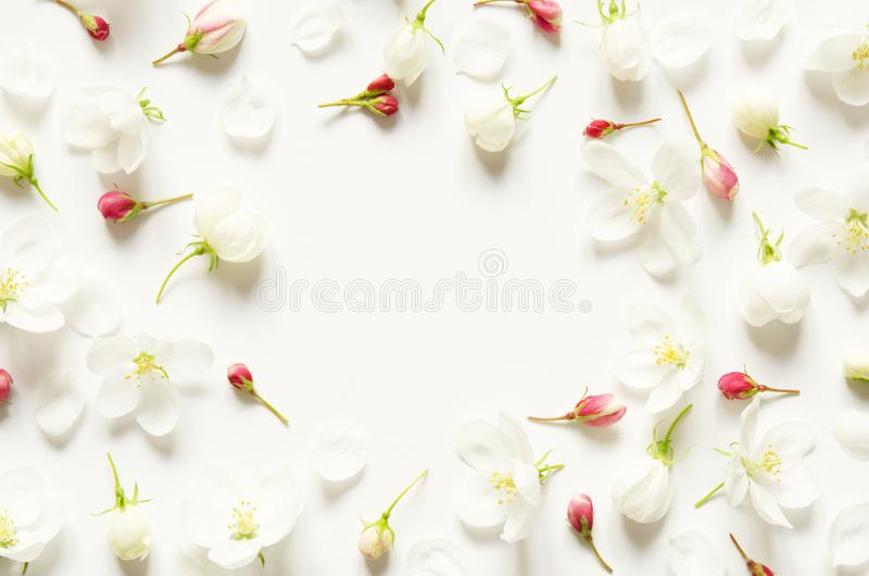 Kreatywnie uk?ad lato ?wiezi kwiaty z przestrzeni? dla teksta na bia?ej ksi?dze Mockup na widok fotografia royalty free
