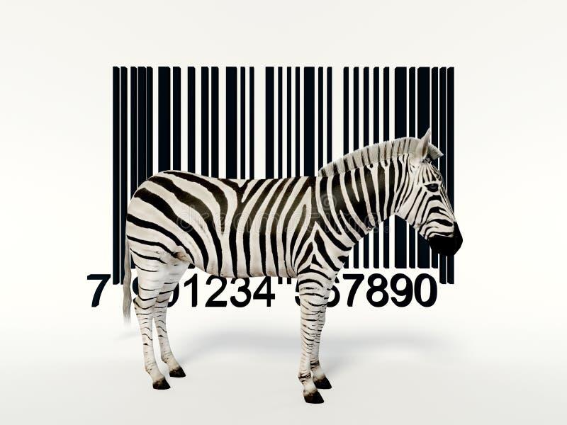kreatywnie zebra obrazy stock