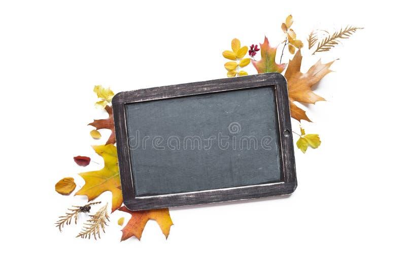 Kredowa deska i stubarwni spadać liście zdjęcia stock