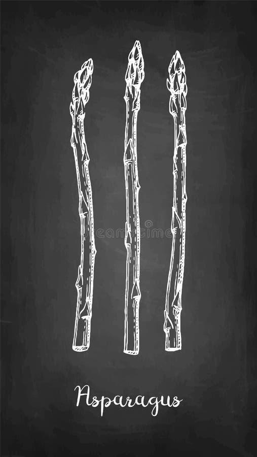 Kredowy nakre?lenie asparagus ilustracja wektor