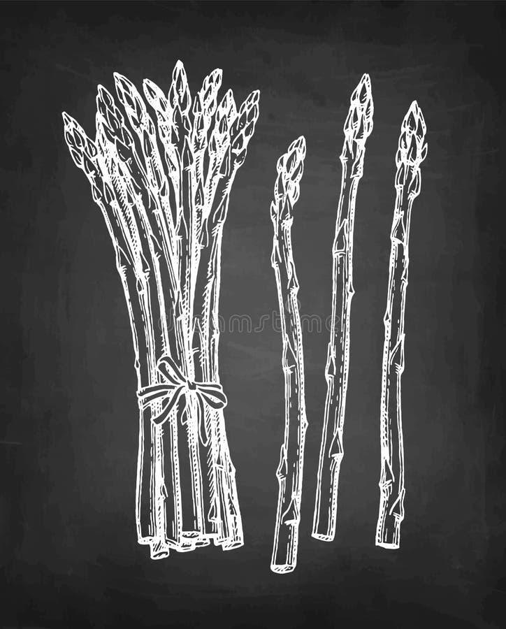 Kredowy nakre?lenie asparagus royalty ilustracja