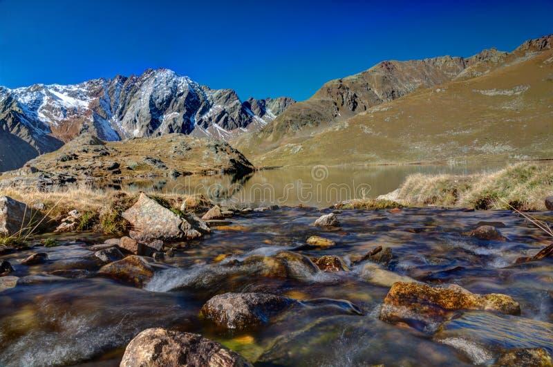 Kreek aan Lago Nero, Nationaal Park Stelvio royalty-vrije stock afbeelding