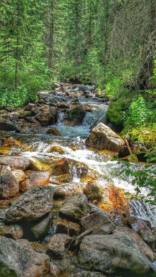 Kreek van een waterval in de rotsachtige bergen stock fotografie