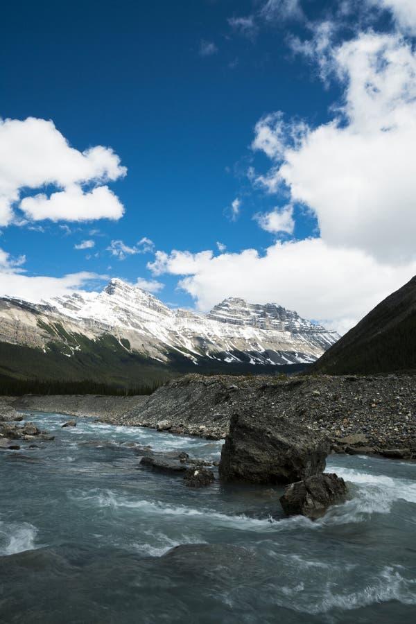 Kreek van het Banff de Nationale Park stock afbeeldingen