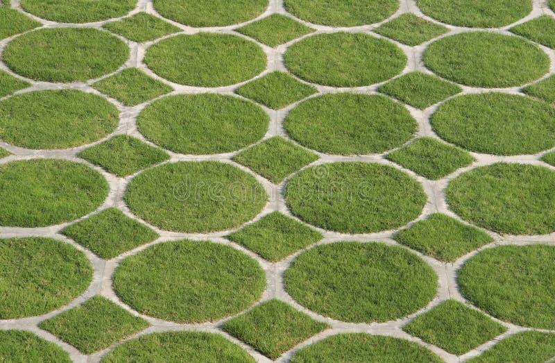 Kreis des grünen Grases und Diamantmuster stockbilder