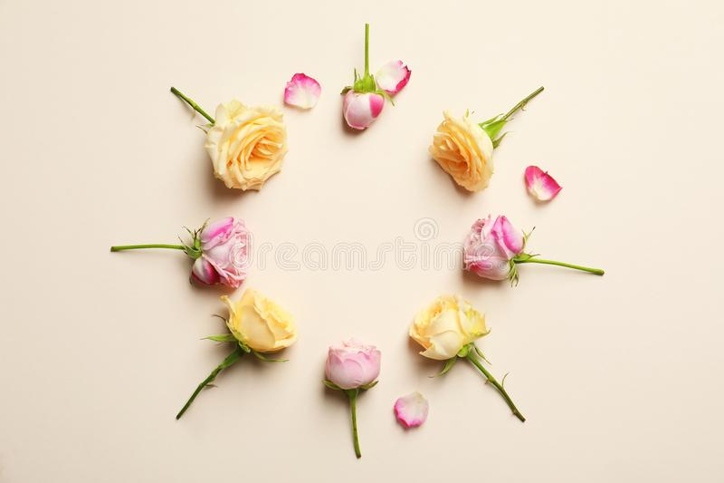 Kreisrahmen gemacht mit Rosen stockbild