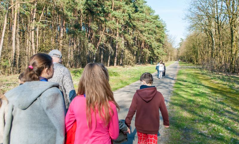 Children walking in the woods for a walk. Back view. Krelingen, Germany 03.29.2019: Children walking in the woods for a walk Back view stock photography