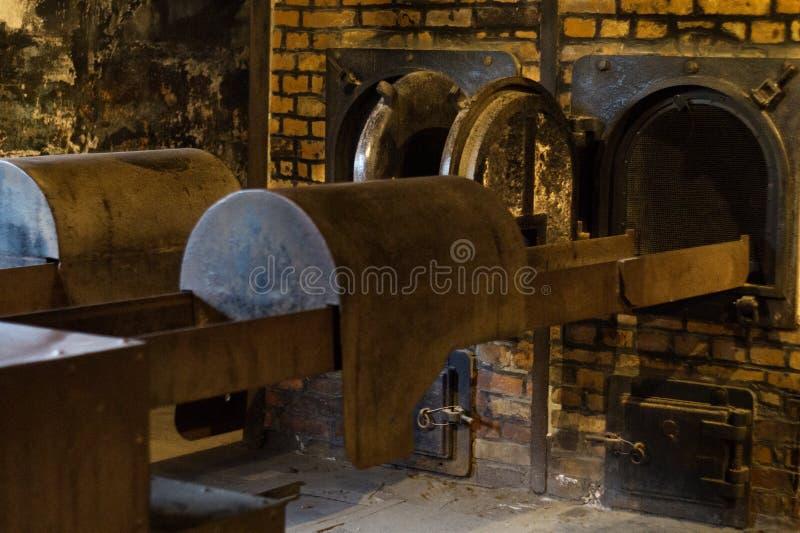 Kremeringugnar i Auschwitz arkivbild