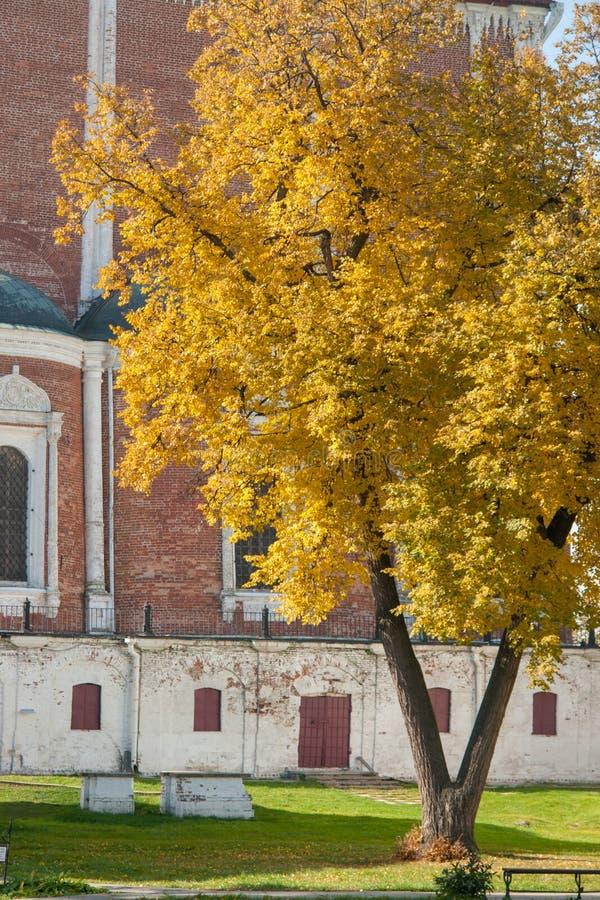 Kremlin de Ryazan no outono - ansamble da igreja do ortodox fotografia de stock