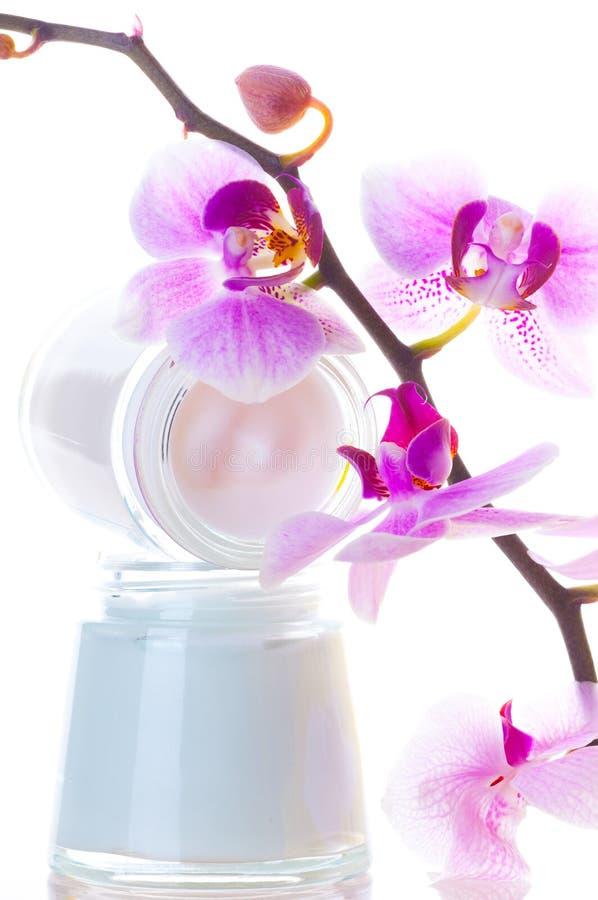 Download Kremowa twarz obraz stock. Obraz złożonej z tulipan, płatki - 13332285