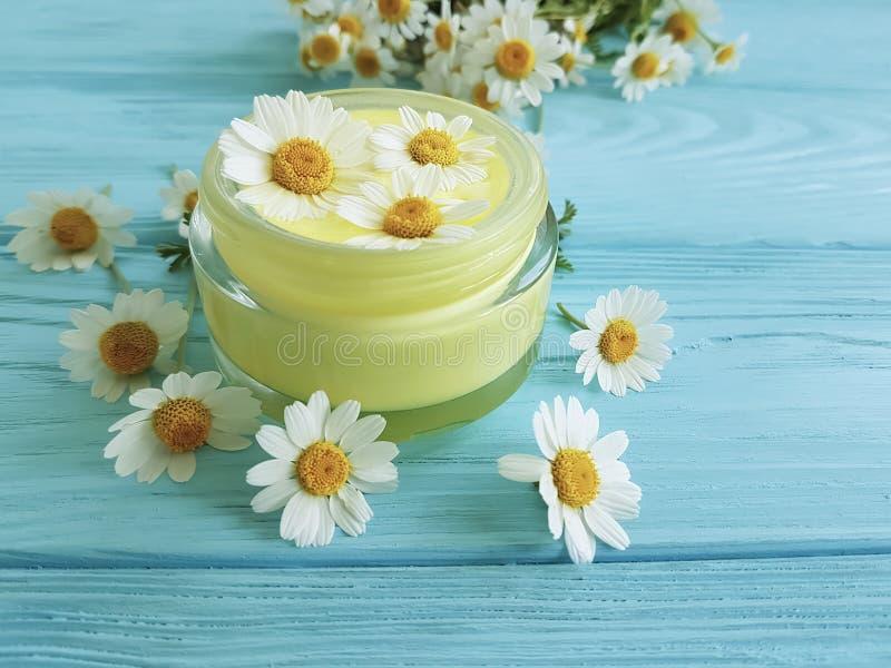 Kremowy kosmetyczny stokrotki chamomile produktu ochrony świeżości ekstrakt na błękitnym drewnianym tle obrazy royalty free