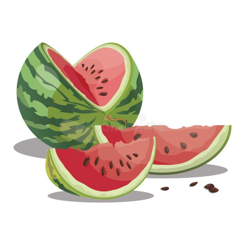 Kreskówka arbuz Pokrojony słodki arbuz Kawałki soczysta owoc Lato witaminy owoc dzieci ilustracyjni ilustracja wektor
