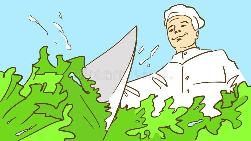 Kreskówka kucharz w szefa kuchni kapeluszu ciie świeżej sałatkowej sałaty z nożowym, dolnym widokiem, royalty ilustracja