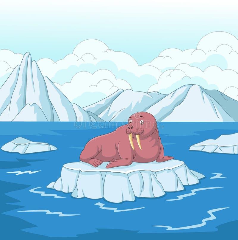 Kreskówka mors na lodowym floe ilustracji