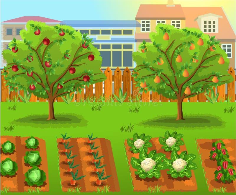 Kreskówka ogród z warzywami i owocowymi drzewami ilustracja wektor