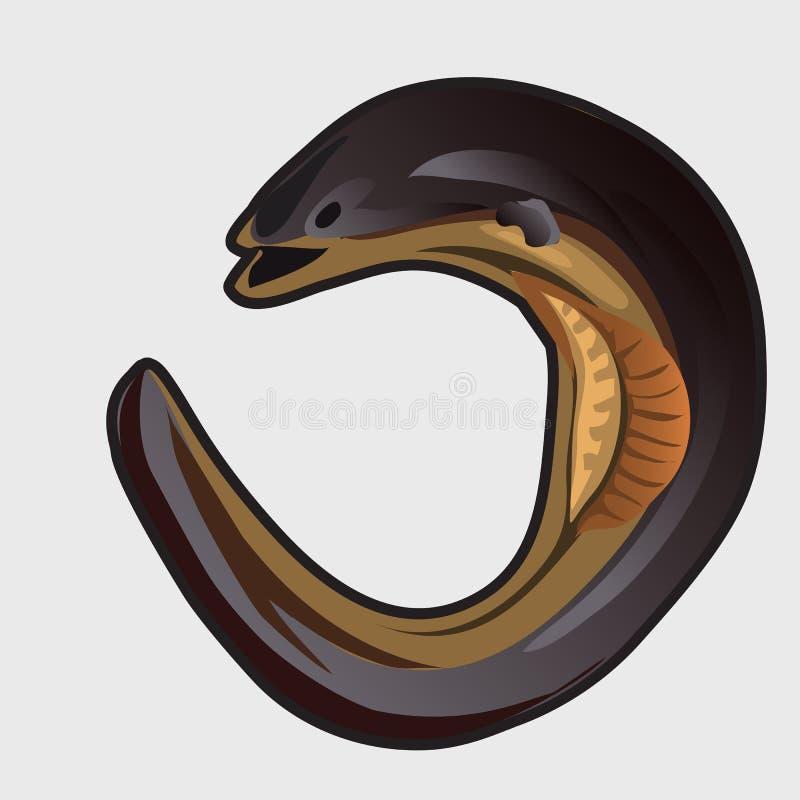 Kreskówka rybi europejski węgorz również zwrócić corel ilustracji wektora ilustracji