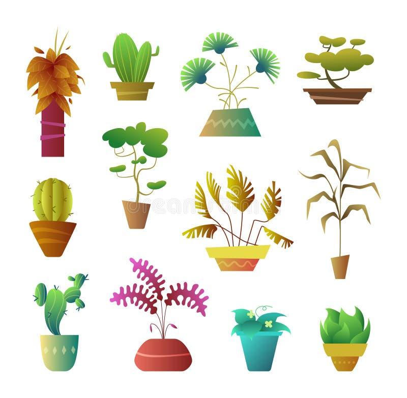 Kreskówka stylu rośliny w garnku Kwiecisty dekoraci wnętrze dla domu, hotelu lub biura, Wektorowa ilustracja stylizowany ilustracji