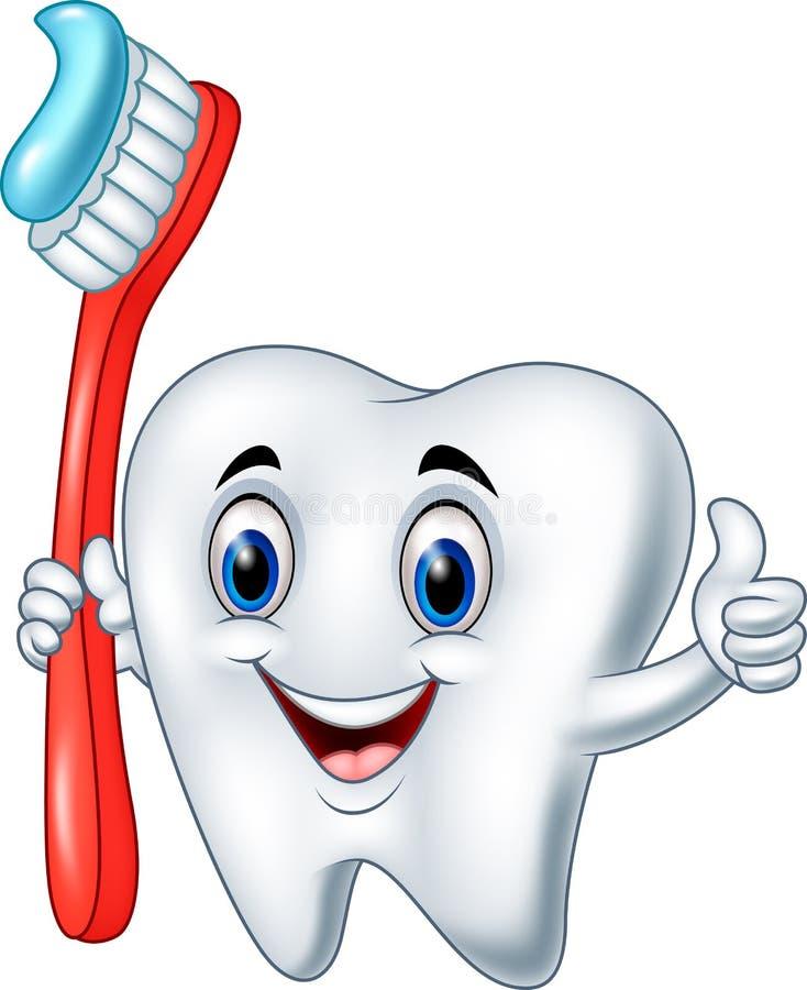 Kreskówka ząb trzyma toothbrush daje kciukowi up royalty ilustracja