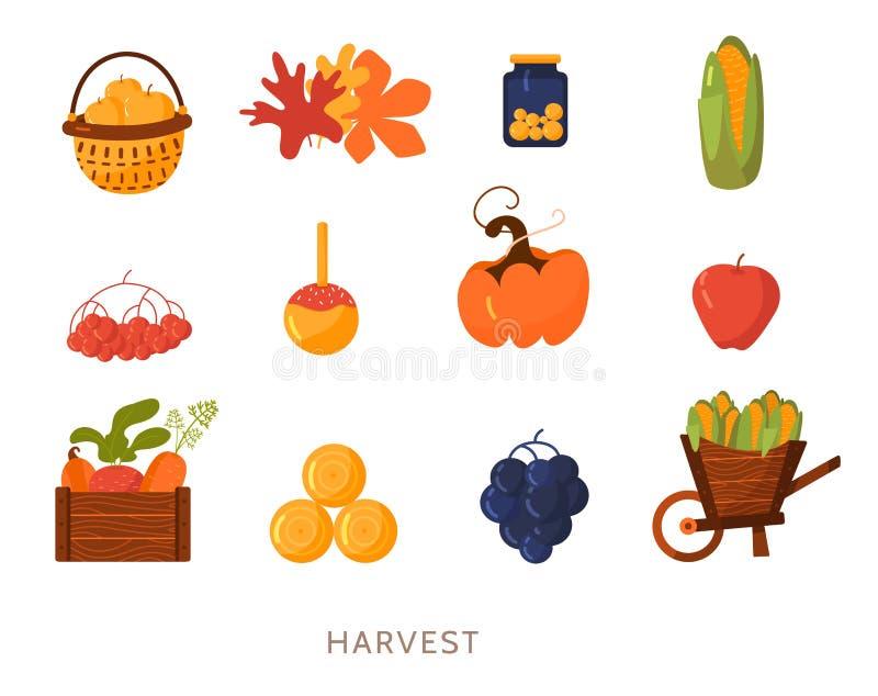 Kreskówki żniwa płaskiej ilustraci elementów ustalony wektor Ustawia odosobnionego na białym tle z kukurudzą, bania, marchewka, p ilustracja wektor