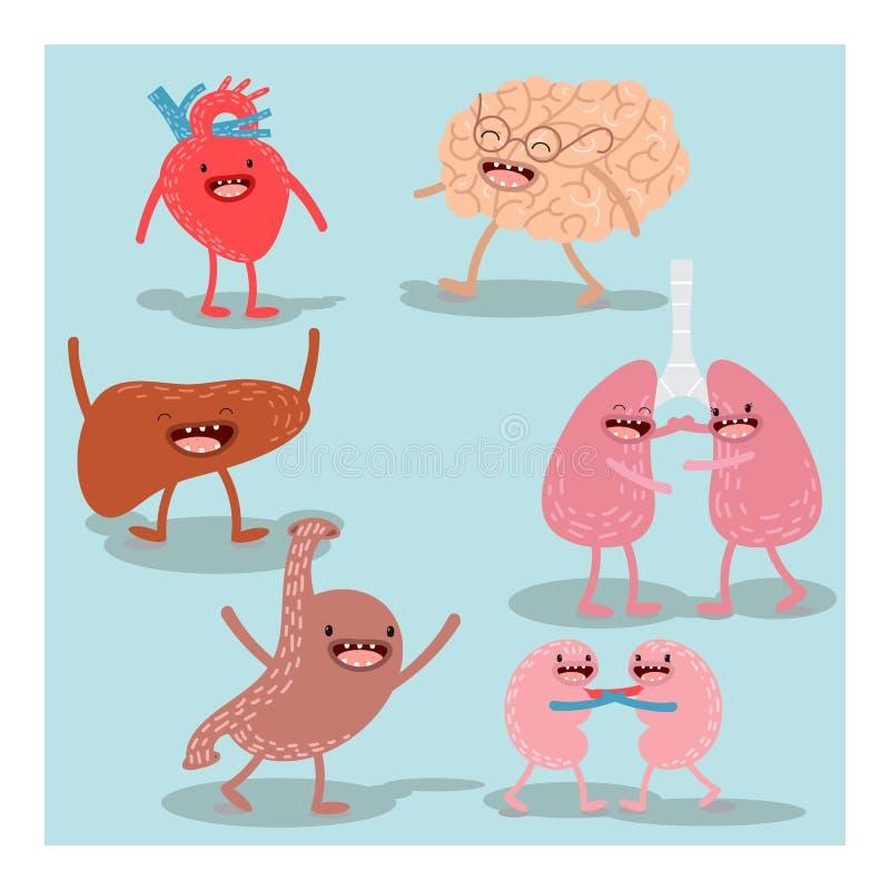 Kreskówki anatomia, ludzcy organy kreskówki serc biegunowy setu wektor royalty ilustracja