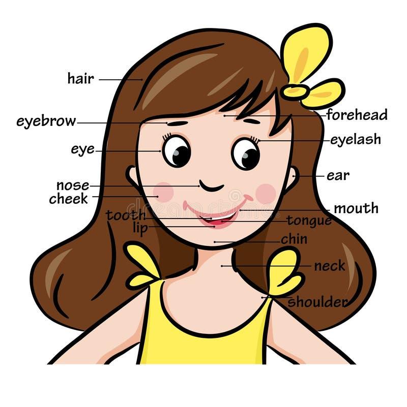 Kreskówki dziecko dziewczyna Słownictwo twarzy części royalty ilustracja