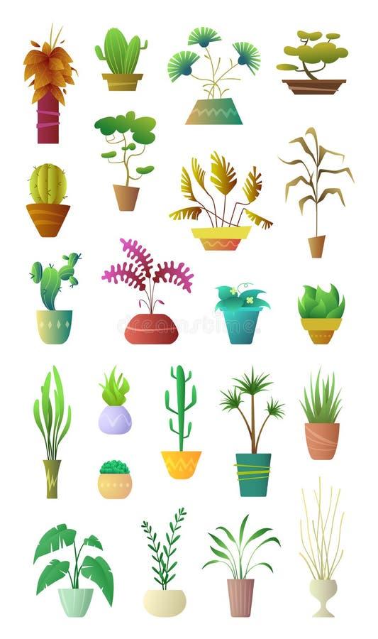 Kreskówki kolekci stylowe rośliny w garnku Kwiecisty dekoraci wnętrze dla domu, hotelu lub biura, Wektorowa ilustracja royalty ilustracja