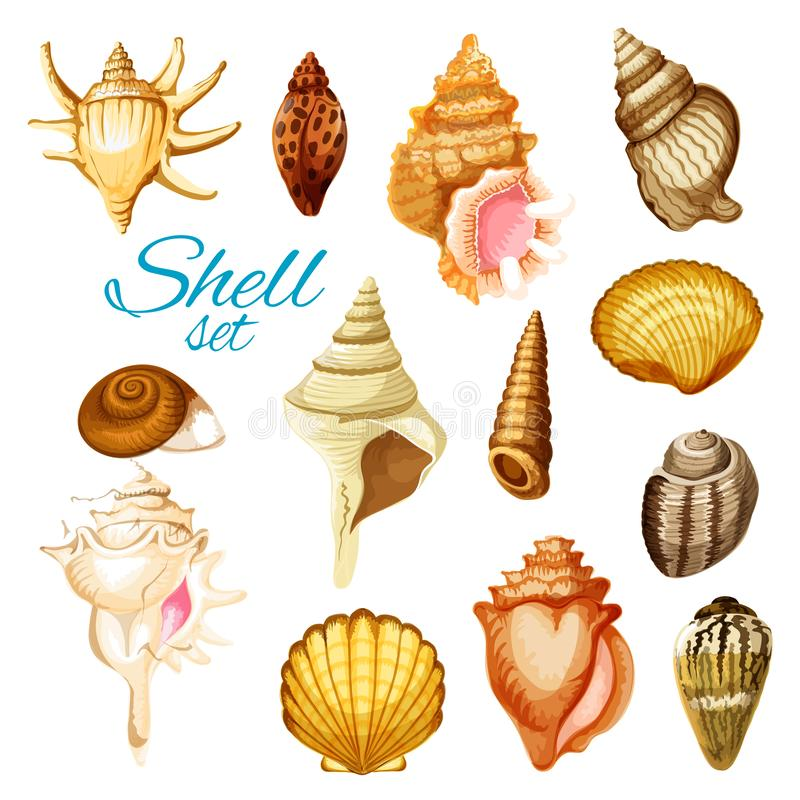 Kreskówki morza i seashell mollusk zwierzęta ilustracja wektor