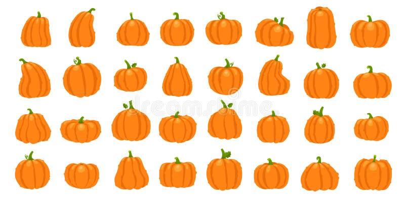 Kreskówki pomarańcze bania Halloweenowe Październik wakacyjne dekoracyjne banie Żółta gurda, zdrowy kabaczka warzywa wektor ilustracji